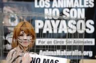Guía de Acción contra los Circos con Animales