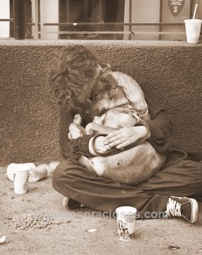El cuidado y afecto a las mascotas, medicina preventiva que promueve la salud y la vida