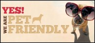 Cafeterías y restaurantes que aceptan perros ( pet friendly)