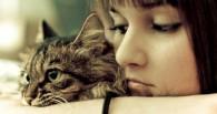 Fidelidad felina
