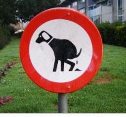 La caca de perro en la via pública