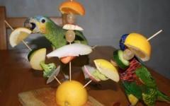 Dieta para Psitácidos (Pericos, Loros y Guacamayas)